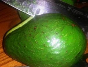Cutting the Avocado Seed